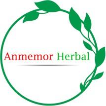 Anmemor store Logo