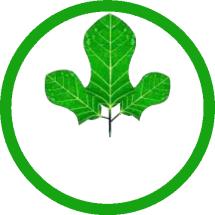 CLINIK DE NATURE