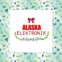 AlaskaElektronik