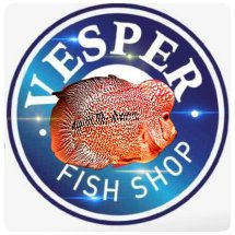 Logo vesper fish shop