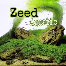 Logo Zeed Aquatic