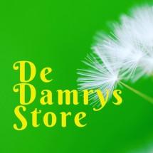 Logo De_Damrys_Store