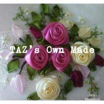 Logo TAZ's Own Made