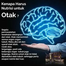 Lancar barokah brainking Logo