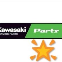 Logo kawasaki_bintang