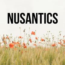 logo_nusantics