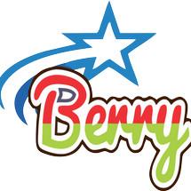 Logo BERRY STAR