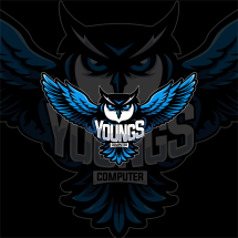 Logo YOUNG'S COMPUTER