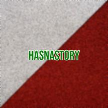 Logo hasnastory