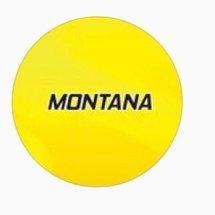 Logo MONTANA ID