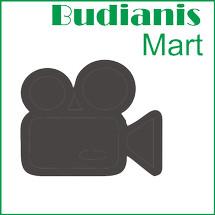 Logo budianis4