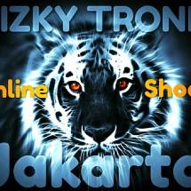 Logo RIZKY TRONIK