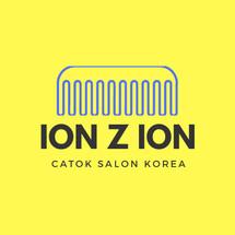Logo ION Z ION