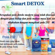 Logo Diet Smart Detox 33