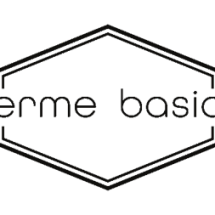 Erme Basic Logo