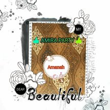 Logo Amira party