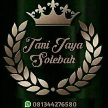 TANI JAYA SOLEBAH Logo