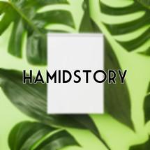 hamidstory Logo