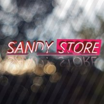 sandy store 11 Logo
