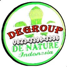 Logo degroup