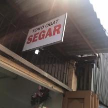Logo TO Segar