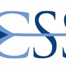 Logo chipset store