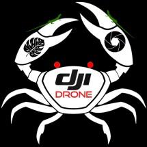 Logo DJI Drone