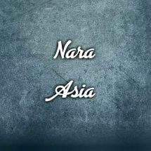 Logo Nara-Asia