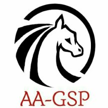 Logo AA General Supplier