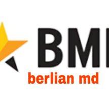Logo berlian md