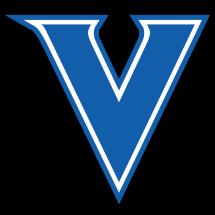 vivi50store Logo