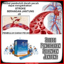 Logo Heart Solution n Blood