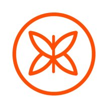 Butterfly Effect Story Logo