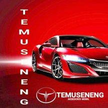 Logo temuseneng
