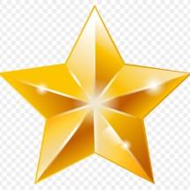 New Star_Shop