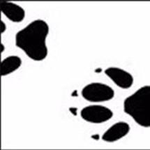 Logo vonsakuraniponBKS