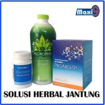 Logo herbal shop13