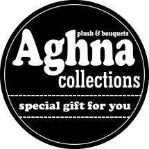 Logo aghna collection