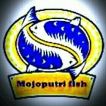 Logo Kaka Baru