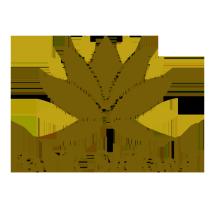 Logo Batik Srikandi