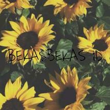 Logo BEKASBEKAS ID