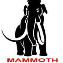 MAMMOTH COMPUTER Logo