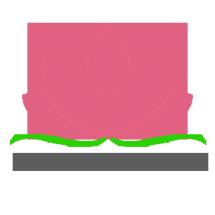 Logo Padma Project