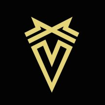 Venture Blaze Store Logo