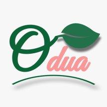 Logo Odua