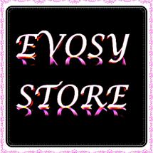 Logo Evosy store