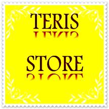 Logo Teris Store
