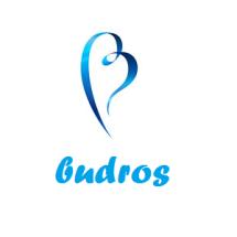 Logo Budros