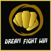 Logo DREAM FIGHT WIN beladiri