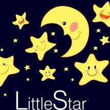 Logo little star.id